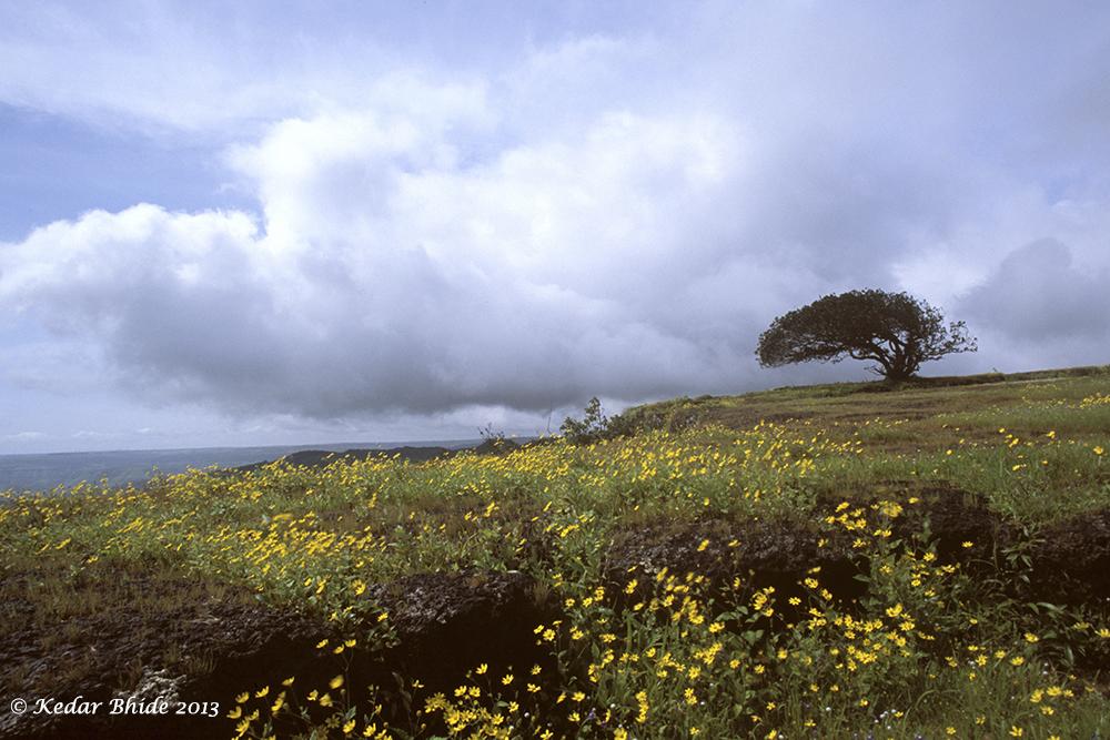 Kas plateau